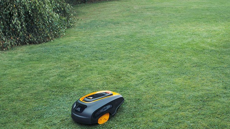 Best Robot Lawn Mower Guide ROB 1000 Robot Lawn Mower