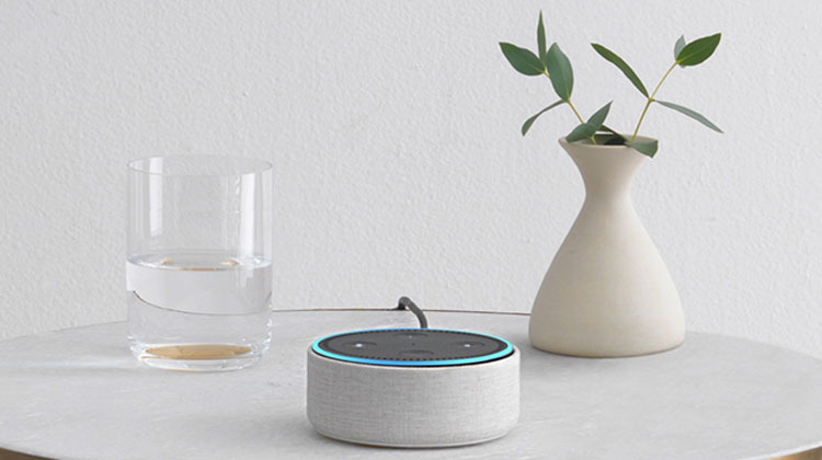 The Ultimate Home Automation Guide for Beginners Voice Controllers Echo Dot Gray
