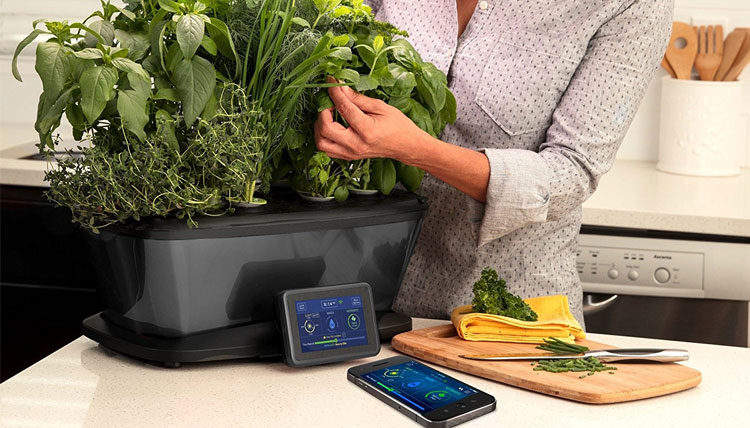 The Best Indoor Smart Garden Systems and Smart Planters AeroGarden Bounty Elite Wi-Fi