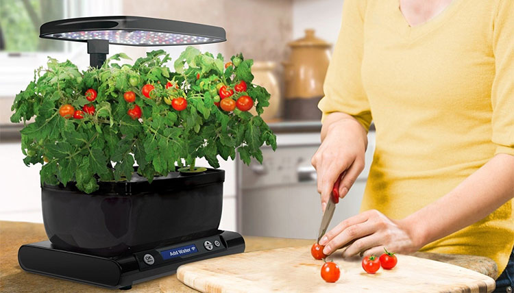 The Best Indoor Smart Garden Systems and Smart Planters AeroGarden Harvest Wi-Fi