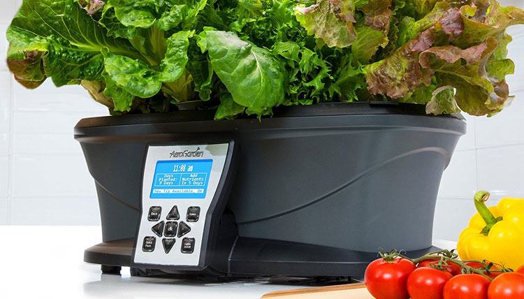 The Best Indoor Smart Garden Systems and Smart Planters AeroGarden Ultra
