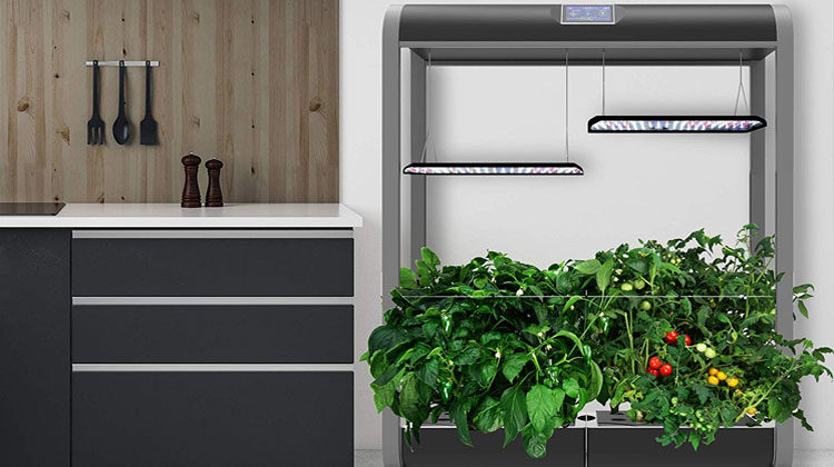 If You Want To Get The Full Home Grown Hydroponic Experience With Minimal Hle And Maximum Yield Aerogarden Farm Indoor Garden Systems Are Hard