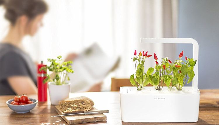 The Best Indoor Smart Garden Systems and Smart Planters Click & Grow Indoor Smart Herb Garden
