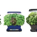 The Best Indoor Smart Garden Systems and Smart Planters