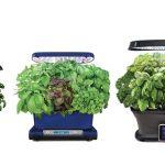 The Best Indoor Smart Garden Systems and Smart Planters