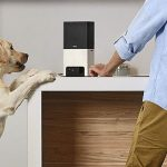 The Best Pet Smart Home Tech for the Ultimate Animal-Friendly Smart Home
