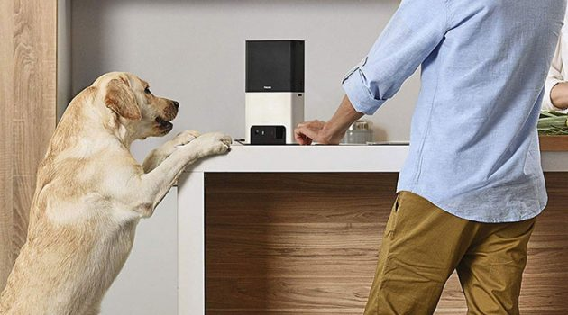 Best Smart Pet Technology